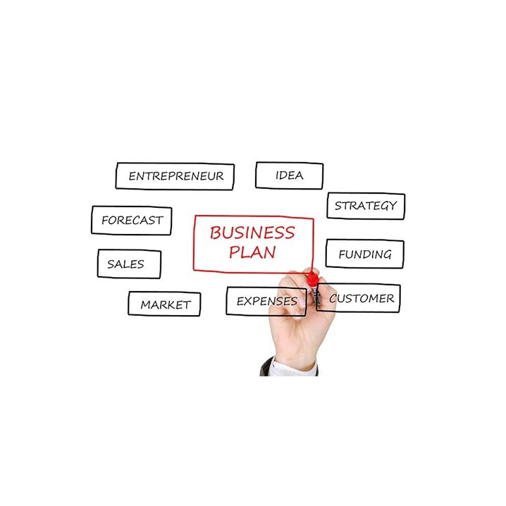 Business plan infographic for selling product online